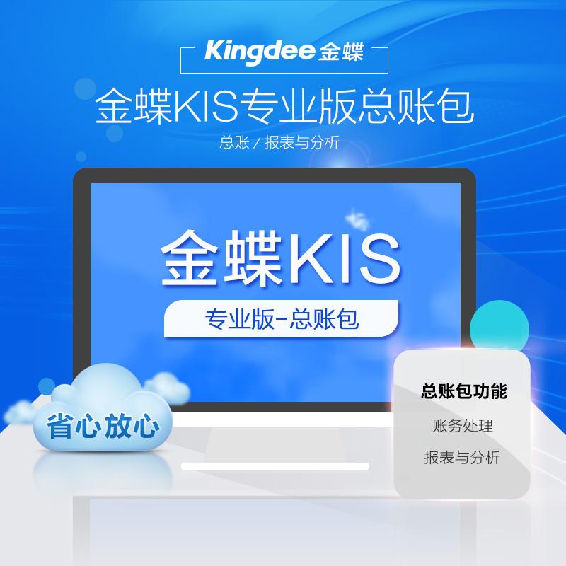 金蝶KIS专业版总账包